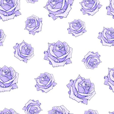 Drawn purple roses seamless background. Flowers illustration front view. Pattern in romantic style for design of fabrics