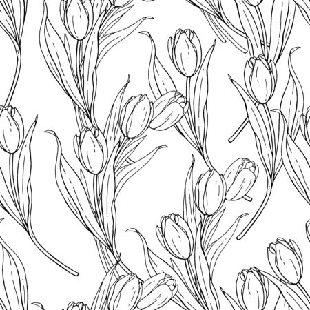 Bouquet of tulips isolated on a white background. Handwork vector drawing. Flower seamless pattern for design