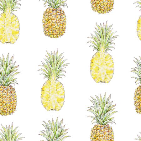 Pineapple on a white background. Watercolor colourful illustration. Tropical fruit. Seamless pattern for design.
