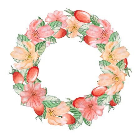 rose hips: A wreath of rose hips. Watercolor illustration. Stock Photo