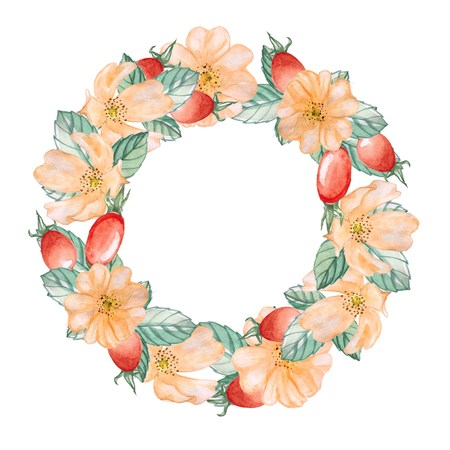 rose hips: A wreath of rose hips 2. Watercolor illustration.Hand drawing. Decorative element for greeting card, Invitation card. Stock Photo