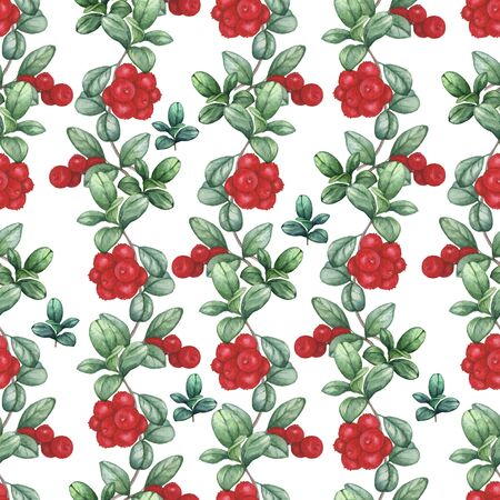 Cowberry. Seamless watercolor pattern. Hand-drawing