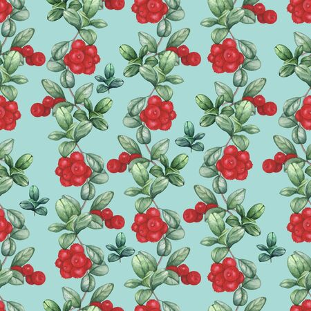 Cowberry 2. Seamless watercolor pattern. Hand-drawing Stock fotó