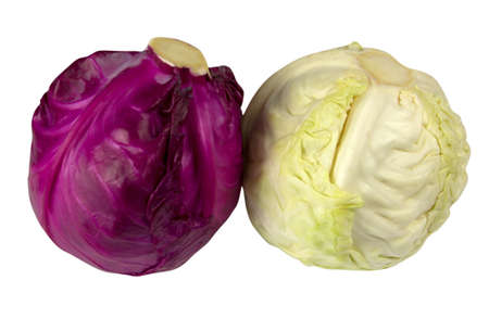 Purple and white cabbage isolated on white background close up shot