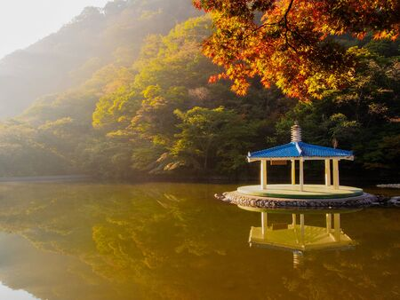 Autumn Landscape with lake and yellowed trees. 写真素材