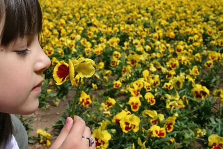 Little girl holding and smelling yellow flower photo