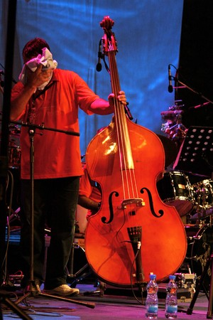 Acoustic double bass player - Classic Jazz photo