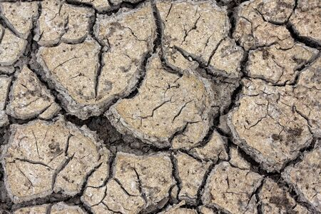 Dry cracked earth texture, Global warming Stock Photo - 8731058