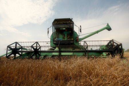 colfax: One Combine Harvesting Wheat Stock Photo