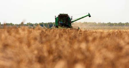 One Combine Harvesting Wheat Stock Photo - 8731043