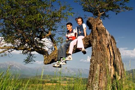 Garçon et fille assise sur les branches de l'arbre Banque d'images