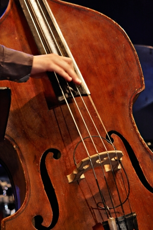 upright: musician playing double bass with your fingers, detail