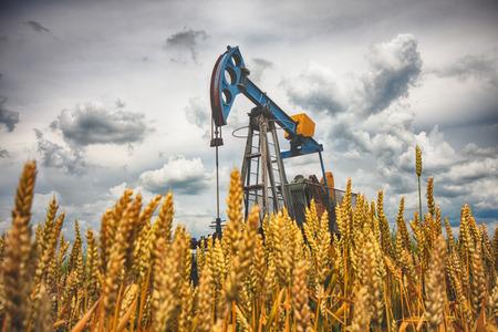 Grande prise de la pompe dans le blé, le pompage de pétrole brut à la surface. Banque d'images
