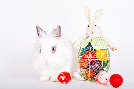 Cute little easter bunny and Easter eggs