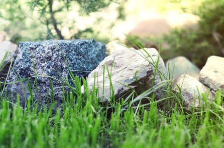 Beautiful big stones close-up that lie in the garden on the green freshly cut grass