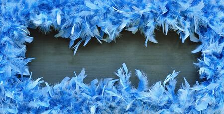 Fluffy bright blue frame on black background from bird feathers Stockfoto