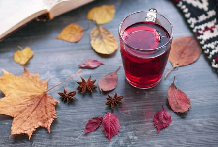 An open book, a warm scarf and a beautiful red tea with mulled wine lie on a gray shabby table among yellow autumn leaves and anise stars