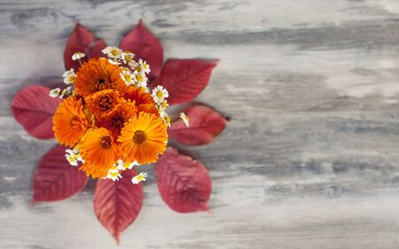 Bright autumn yellow chrysanthemum flowers and white daisies in a vase stand on the table in dry red autumn leaves on a gray faded old table