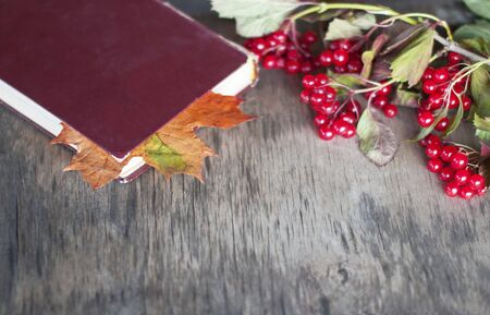 An old worn book with a bookmark of dry yellow maple leaf lies on a gray old worn rustic table Archivio Fotografico