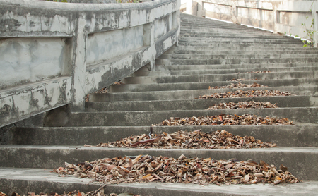 dry leaf: Step pile of dry leaf on staircase up