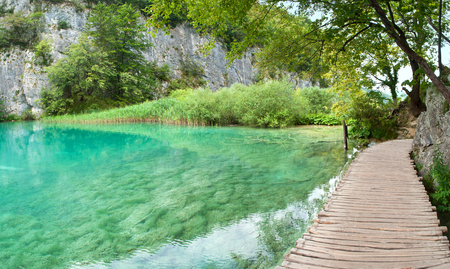 Transparent turquoise waters of Gavanovac lake among green trees and high white rocks in summer. Plitvice lakes national park, Croatia