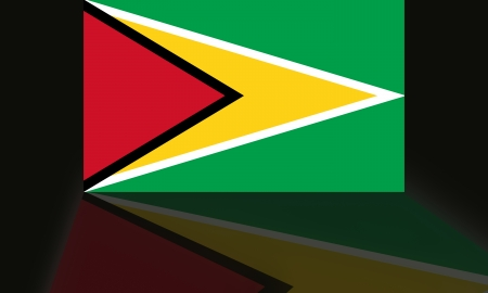 Guyana: Flag of Guyana