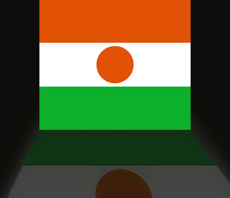 shaddow: Flag of Niger