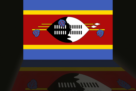 shaddow: Flag of Swaziland
