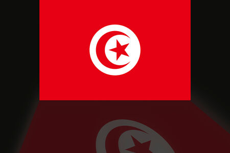 shaddow: Flag of Tunisia Stock Photo