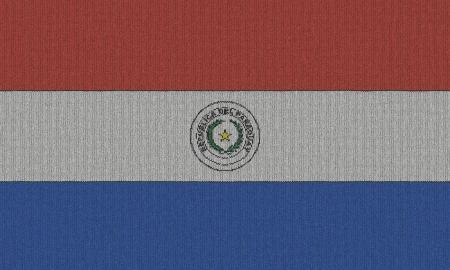 Paraguay flag: Bandera de Paraguay de punto