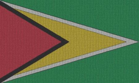Guyana: Knitted Guyana flag