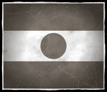 Old flag of Niger Stock fotó
