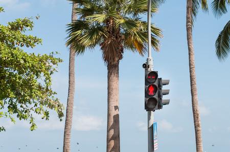 crossings: Traffic light for wait to crossings road.