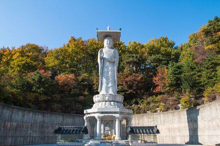 gangnam: Buddha at Bongeunsa Temple in Gangnam.