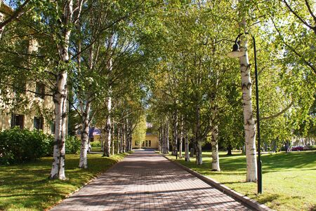 Park Alley in Finland Stock Photo