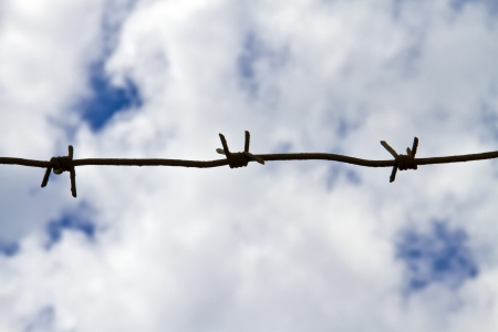 Barbed wire on the background of fluffy white clouds photo