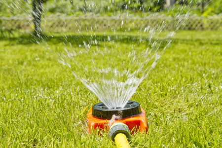sprinkle system: Watering green lawn on the site of a country house