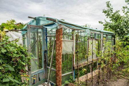 Construction of a greenhouse in the garden from scrap materials and old junk Standard-Bild - 129459725