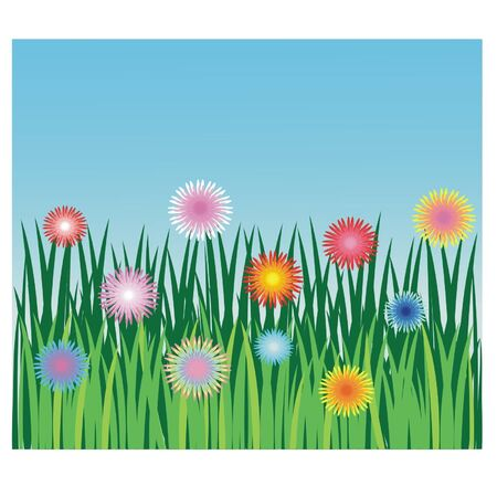 Flowers and herb of the meadows Stock Vector - 10264897