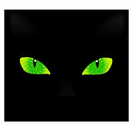 a pair of cat eyes on a black background. Vector
