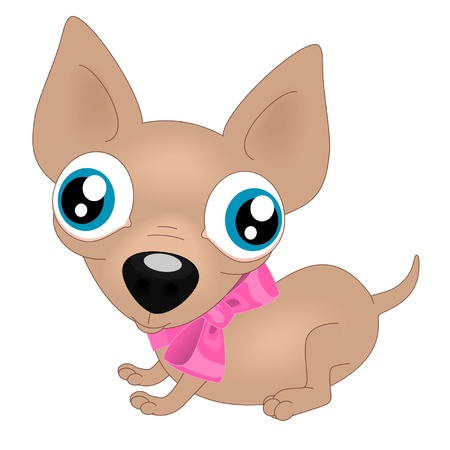 cartoon chihuahua: The little puppy isolated on white background