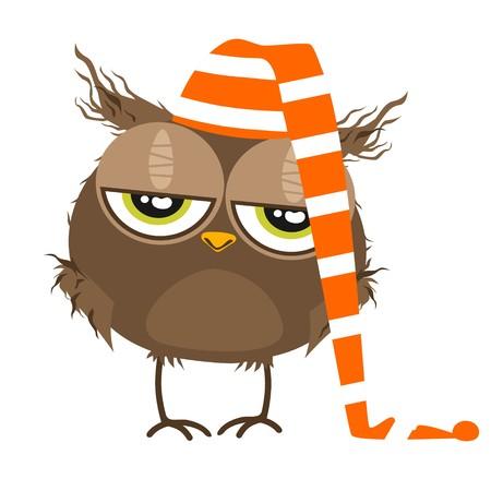 Owl with sleep hat