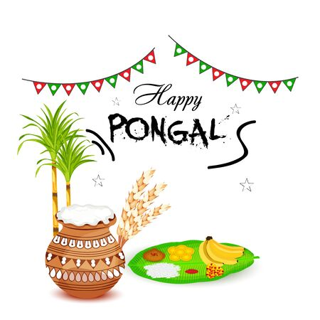 Vector illustration of colorful Happy Pongal with harvest rice for festival in India. Illustration