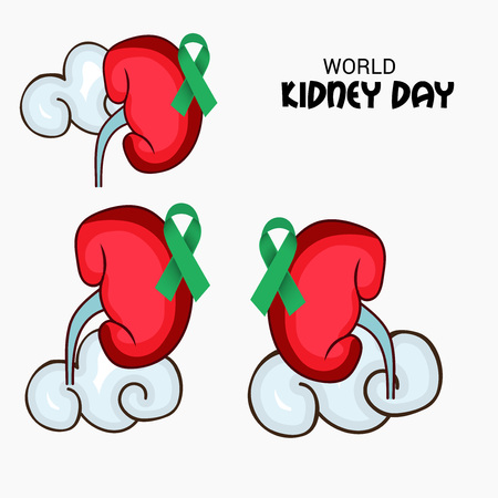 World Kidney Day banner, kidney with green ribbon design over gray background