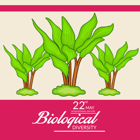 International Day for Biological Diversity banner with trees on pink background. Vector illustration.  イラスト・ベクター素材