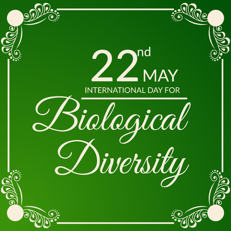 International Day for Biological Diversity text lettering on green background with border. Vector illustration.