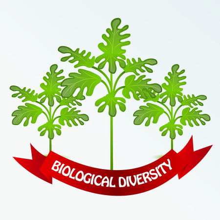 International Day for Biological Diversity banner with trees Vector illustration.  イラスト・ベクター素材