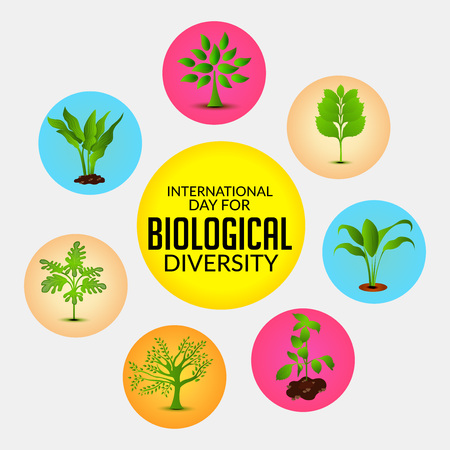 International Day for Biological Diversity with colorful tree icons vector illustration.