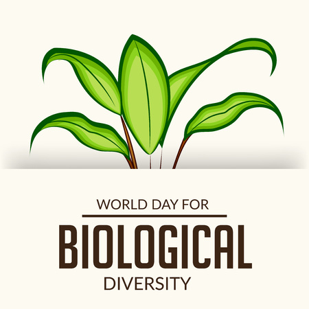 International Day for Biological Diversity with green leaves and text on white background. Vector illustration.  イラスト・ベクター素材
