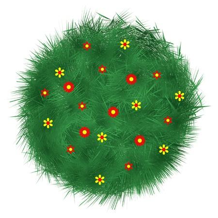 grass land: grass